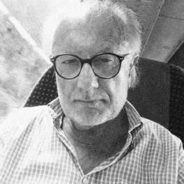 DAVID MCLION